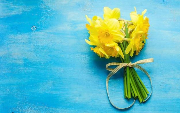 Concept de printemps avec des fleurs jonquilles jaune vif