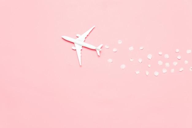Concept de printemps avec des pétales d'avion et de fleurs sur fond rose avec espace de copie.