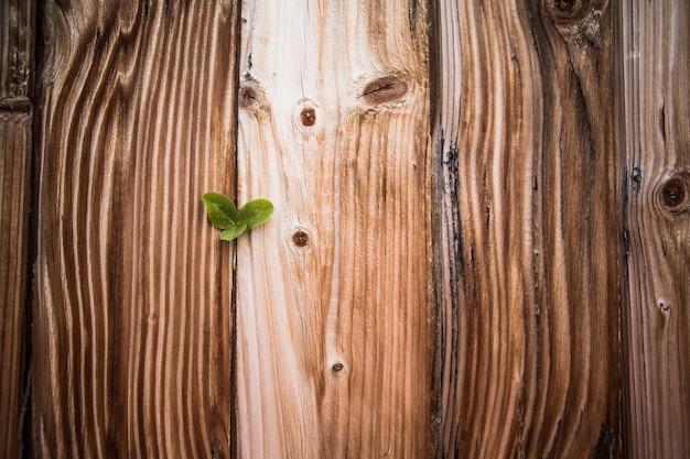 Concept de la saint-patrick - trèfle sur des planches de bois
