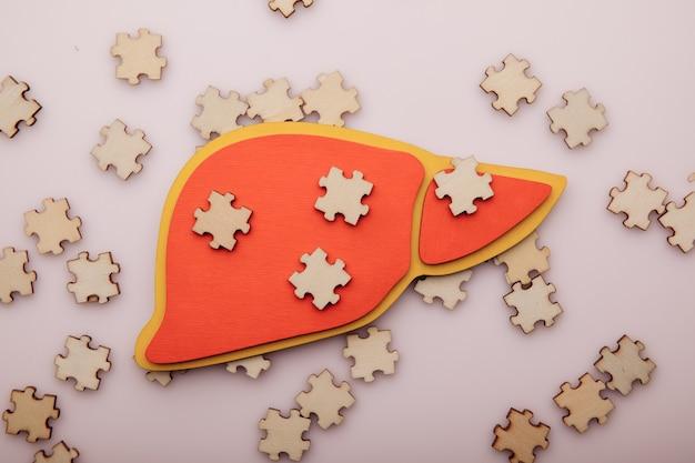 Concept de soins de santé de puzzles en bois et foie