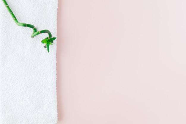 Concept spa: pile de trois rouleaux de serviettes de bain moelleuses blanches avec des plantes vertes en bambou lucky sur des panneaux blancs