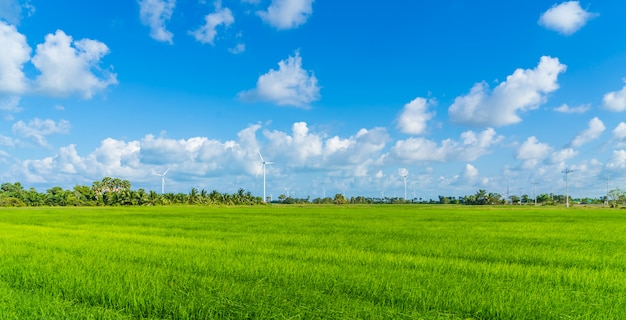 Concept de technologie verte. éoliennes dans le champ