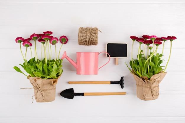 Concept de travaux de jardin de printemps. outils de jardinage, fleurs en pot et arrosoir sur tableau blanc. vue de dessus, pose à plat
