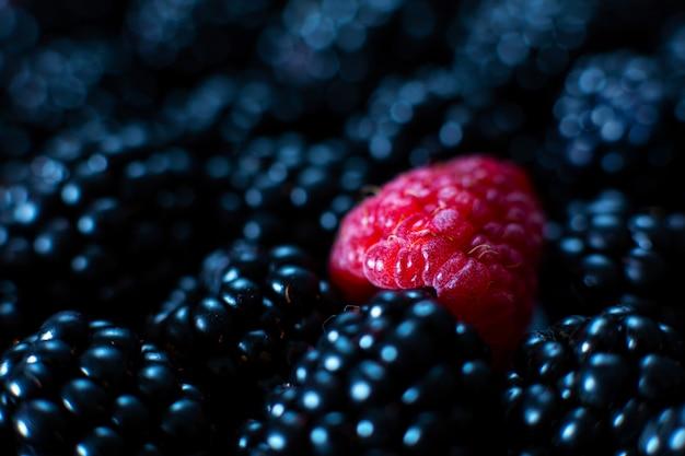 Le concept d'unicité. pas comme les autres. framboise rouge dans un tas de mûres noires