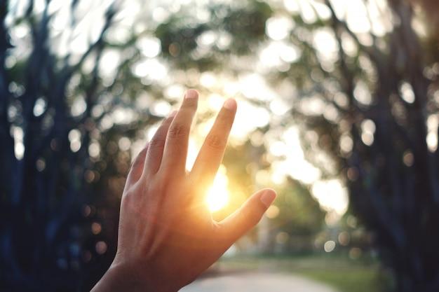Concept de vie. la main de l'homme s'élevant dans le ciel au coucher du soleil