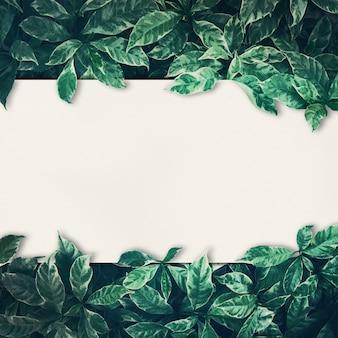 Conception de fond de feuilles vertes avec du papier blanc