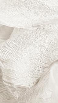 Conception de fond texturé feuille de lys séchée