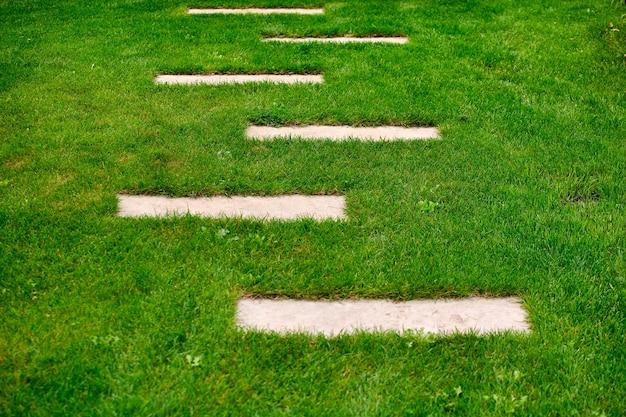 Conception de jardin, allées de pelouse et terrasse