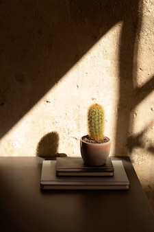 Conception minimaliste de l'espace de travail à domicile