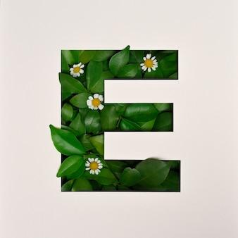 Conception de polices, police de l'alphabet abstrait avec des feuilles et des fleurs, typographie de feuilles réalistes - e