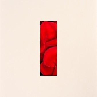 Conception de polices, police de l'alphabet abstrait avec des pétales de rose, typographie de fleurs réalistes - i