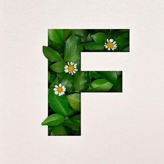 Conception de polices, police alphabet abstraite avec feuilles et fleurs, typographie de feuilles réalistes - f