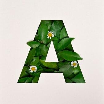 Conception de polices, police alphabet abstraite avec feuilles et fleurs, typographie de feuilles réalistes - a