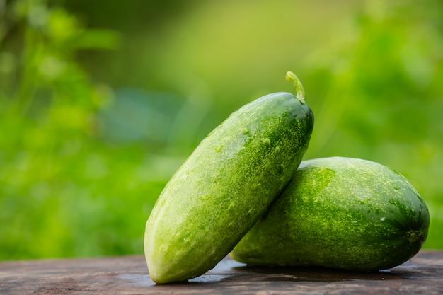 Concombre qui est placé sur une table en bois et a une couleur verte naturelle floue dans le dos.
