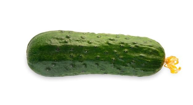 Un concombre vert mûr isolé. image gros plan du légume idéal avec pédoncule frais, des aliments biologiques naturels sains
