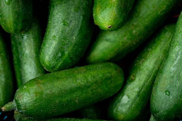 Concombres entiers verts