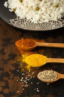 Condiments délicieux à angle élevé dans des cuillères
