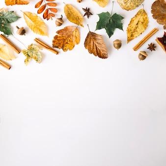 Condiments et feuilles en arrangement