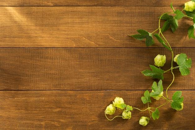 Cônes de houblon sur bois