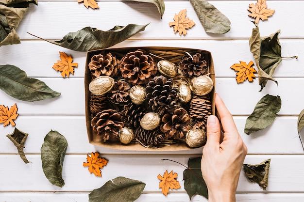 Cônes de pin et noix dans la boîte, feuilles séchées sur fond blanc