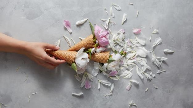 Cônes sucrés dans une main de femme avec des fleurs de pivoine rose et blanc doux, pétales sur fond de béton gris