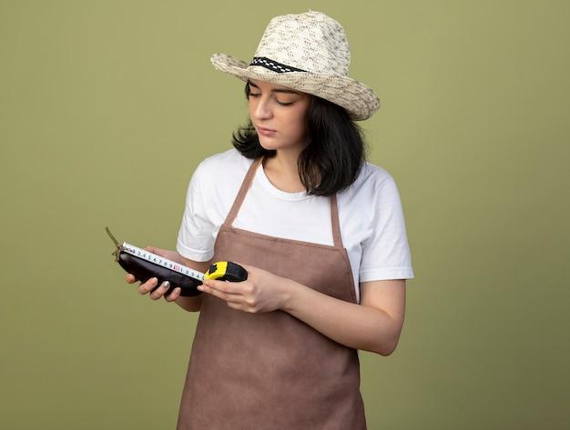 Confiant jeune femme brune jardinière en uniforme portant chapeau de jardinage mesurant l'aubergine avec un ruban à mesurer isolé sur mur vert olive