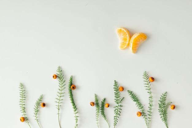 Configuration à plat faite de mandarine et d'herbe verte sur une surface blanche