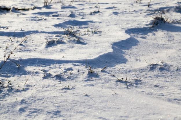 Des congères de neige dans un champ avec de l'herbe