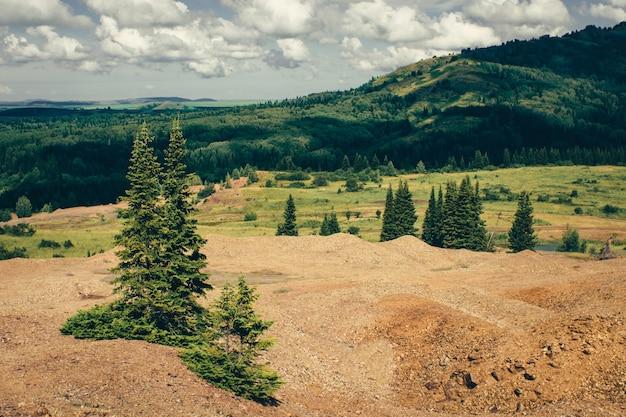 Les conifères poussent sur un terrain rocheux de montagnes avec une forêt verte. paysage de verdure sous un ciel nuageux.