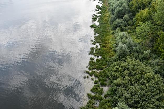 Connexion rivière et forêt. vue d'en-haut