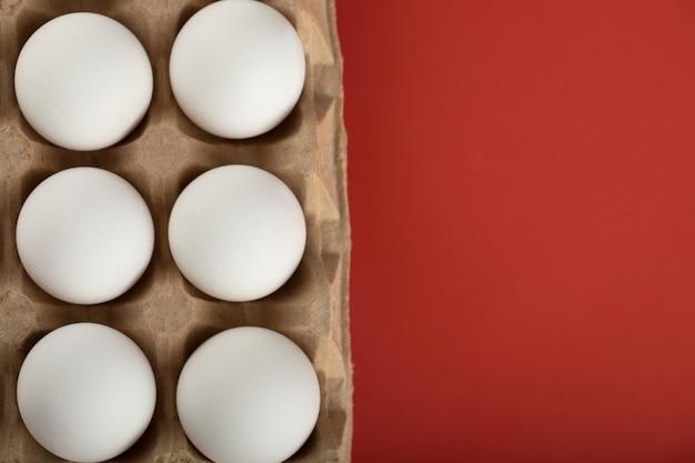 Conteneur d'oeufs blancs sur une surface rouge.