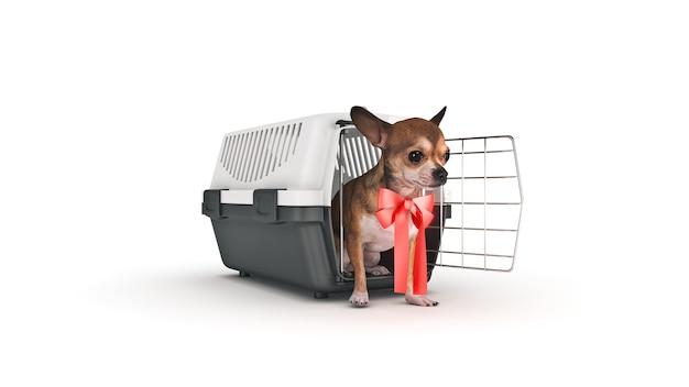Le conteneur pour le transport des animaux avec un petit toutou rendu 3d