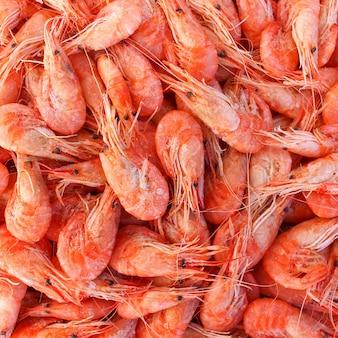 Contexte beaucoup de crevettes. vue de dessus.