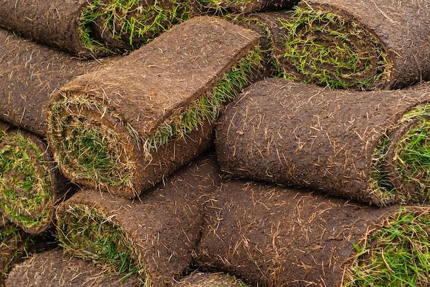 Contexte - une pile de rouleaux de tourbe roulés avec de l'herbe, prêts pour la pose de la pelouse