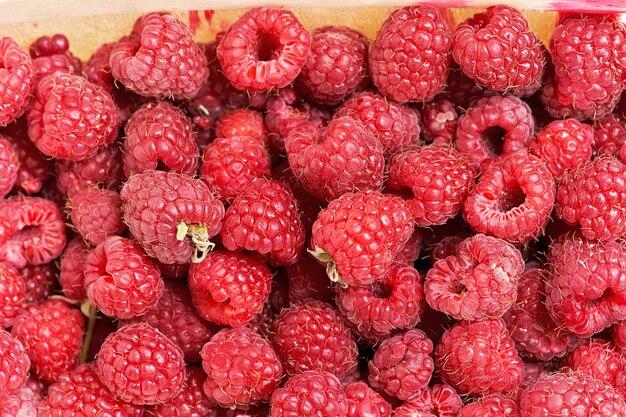 Contexte d'une variété de framboises mûres rouges. gros plan, de, baies, récolte