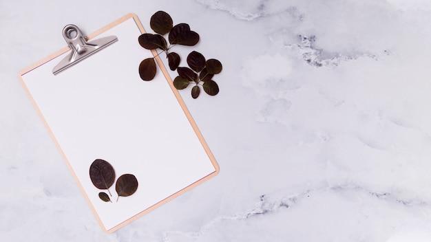 Copier le presse-papier de l'espace avec des feuilles violettes