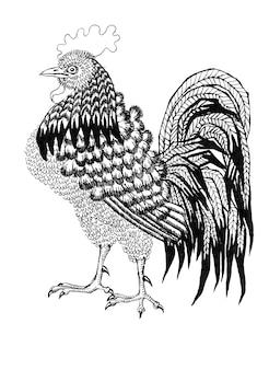 Coq graphique isolé sur fond blanc graphiques noir et blanc croquis vintage de coq