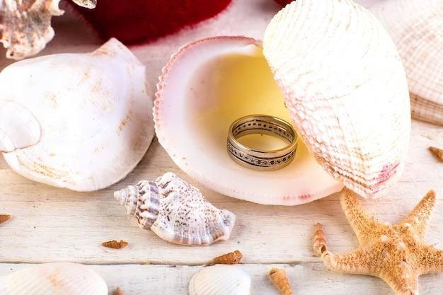 Coquillage anneau engagé