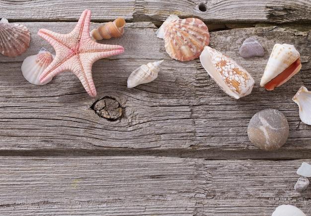 Coquillage et étoile de mer sur une vieille table en bois