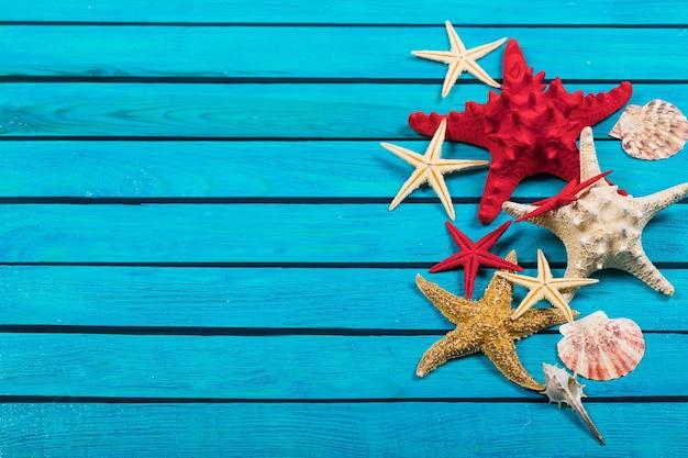 Coquillage sur fond en bois bleu. concept de voyage
