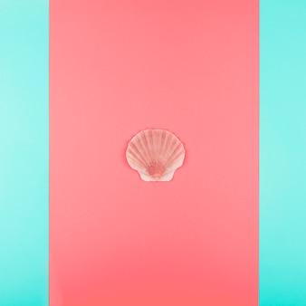 Coquillage saint-jacques sur fond corail et menthe