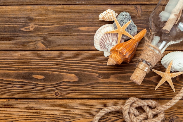 Coquillages bordant le bois, marine