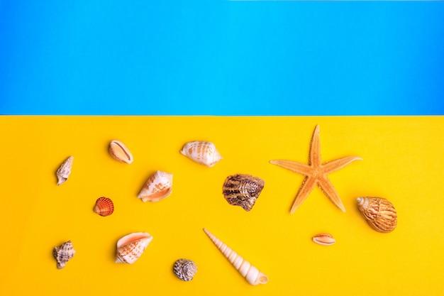 Coquillages et étoiles sur fond jaune et bleu.