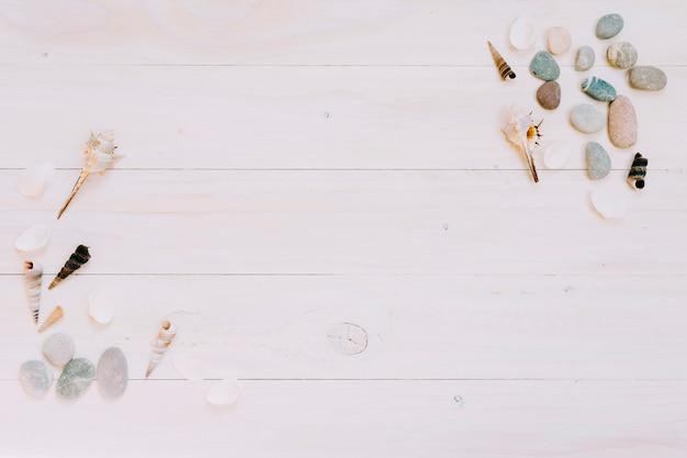 Coquillages et galets sur une surface rayée