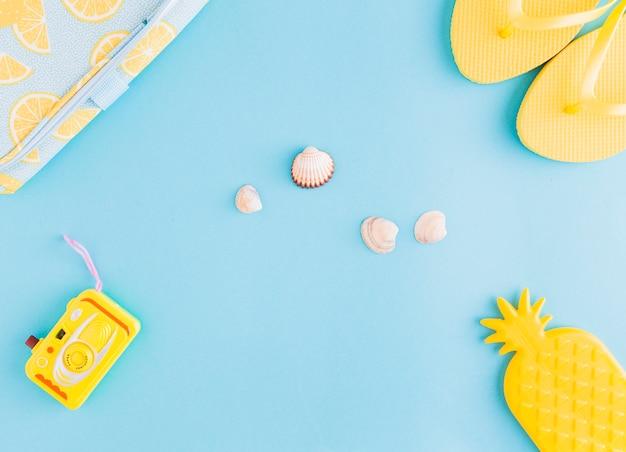 Coquillages et objets en bord de mer sur fond clair