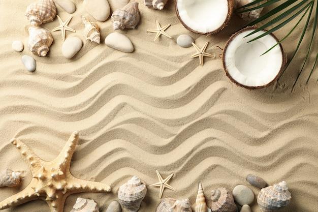 Coquillages, pierres, étoiles de mer, noix de coco et branche de palmier sur la surface du sable de mer