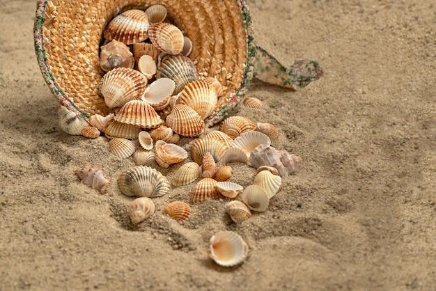 Coquillages renversés d'un chapeau de paille jeté sur une plage de sable