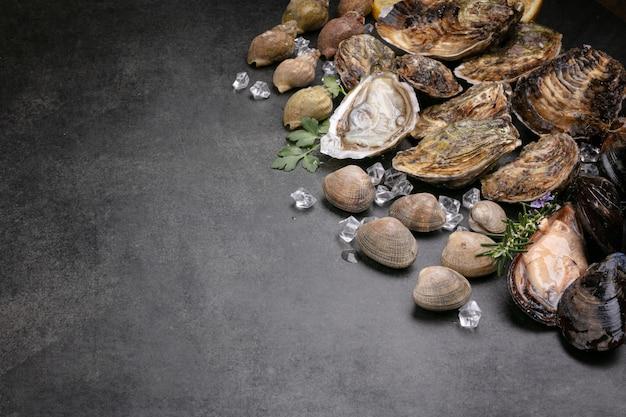 Coquille, moule, huître, palourde, escargot de mer sur fond noir