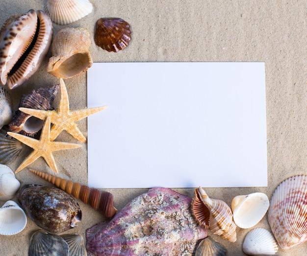 Coquilles, étoiles de mer et une carte postale vierge