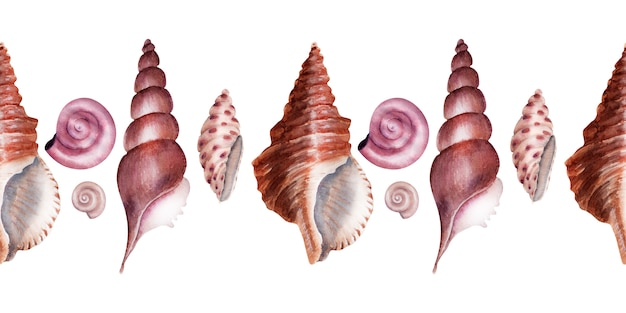 Coquilles de mer frontière aquarelle. coquilles en nacre rose.